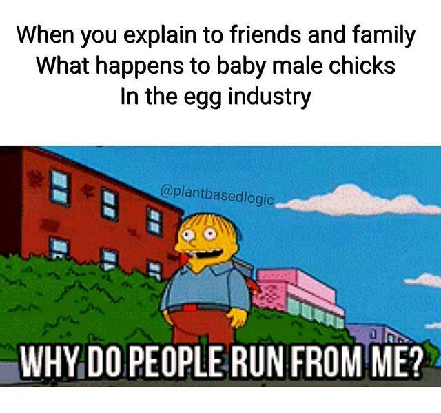 Vegan fun